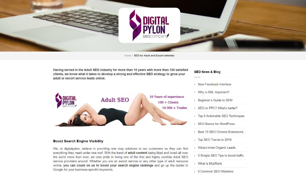Digital Pylon screenshot